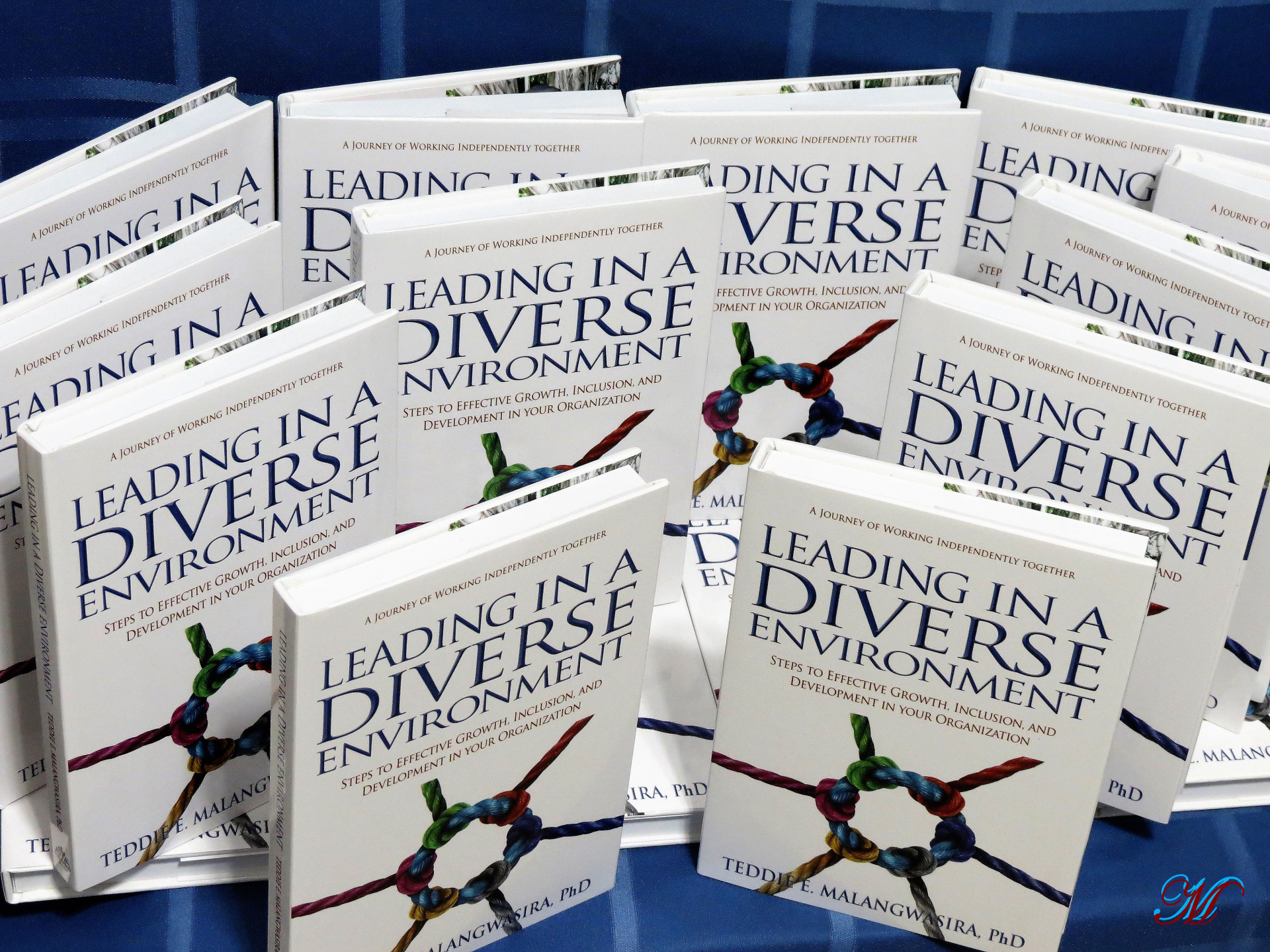 Leading In A Diverse Environment